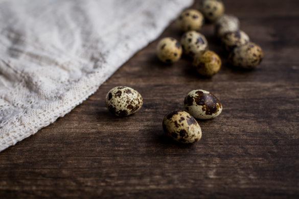 nutritious quail eggs