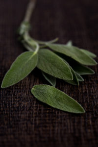 Fresh loose sage on rustic table