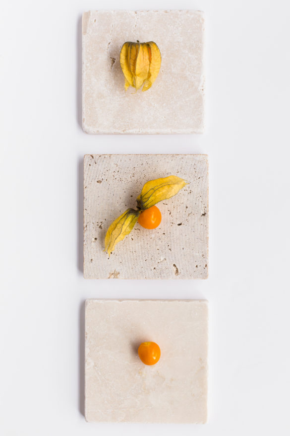 Physalis Fruit on table