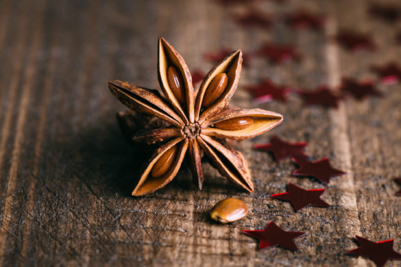 Star Anise Spice Close-up