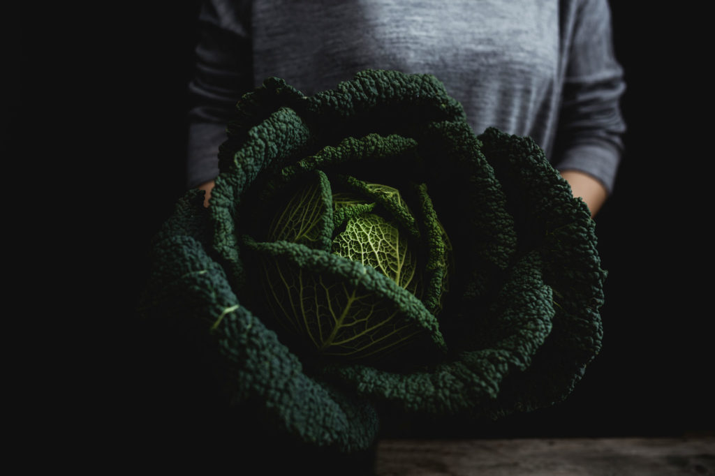 Large leafy savoy green cabbage with texture
